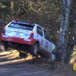 Citroën AX contre un arbre
