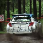Peugeot 207 S2000 en sous-bois