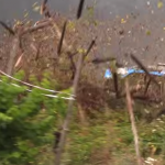 La Ford Fiesta WRC dans les vignes