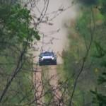 Une Ford Fiesta R5 vue de haut à travers les arbres